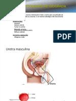 PDF Uretrocistografia Retrograda e Esforopdf Compress