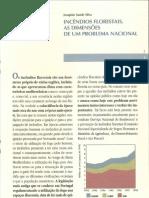 Incendios Florestais, Dimensoes Problema Nacional_I