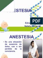 anestesia expo