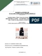 raport la studiul de evaluare a impactului fabrica lactate mariuta