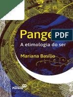 1_pangeia