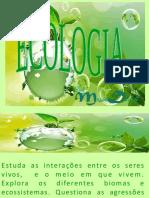 Ecologia 6 Ano