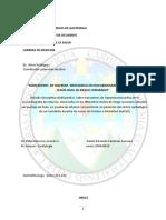 informe de investigacion electivo