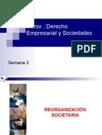 1.5 Reorganización de Sociedades