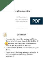 Plexus cervical