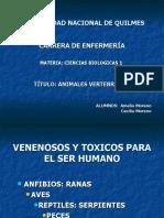 ANIMALES VERTEBRADOS - Ofidios