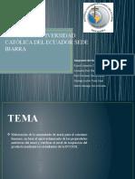 proyectomermeladadearaza-120127160309-phpapp01