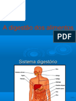 aula8ano-adigestodosalimentos-130610170102-phpapp02 (1)