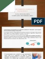 Tema 3- Envejecimiento normal y patológico