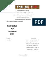 Estructura y organización de los servicios de emergencia