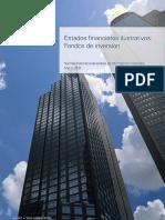 2010-03-kpmg-audit-estado-financiero-ilustrativo-fondo