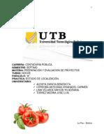 Proyecto Tomates Organicos