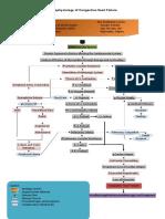 Pathophysiology of Congestive Heart Failure