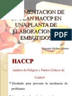 Implementacion de Un Plan Haccp en Una Planta Gaby