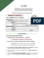 TRABAJO ACADÉMICO POLITICa 2010-2