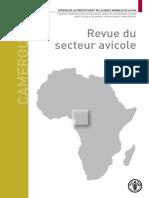 Revue Du Secteur Avicole Cameroun _FAO