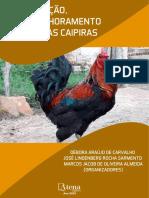 Livro-GalinhaCaipira-Cap4 (2)