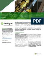 san_miguel_-_caso_de_estudio
