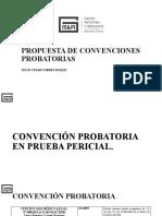 Propuesta de convenciones probatorias.