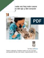 Gusano del Corazon y Del ojo en perros
