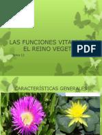 Funciones Vitales de Las Plantas