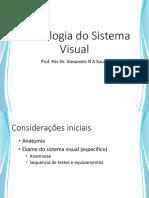 Semiologia do sistema visual