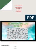 NÚMEROS-REALES-MARLENE-GUEVARA-10D