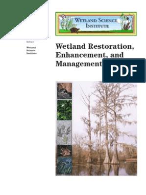 Usda Wetland Restoration Enhancement And Management Levee Wetland