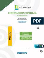 Terceros Molares y Ortodoncia2