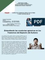 CONDUCTAS AGRESIVAS NIÑOS CON AUTISMO  Y COMO CONTROLARLOS