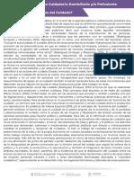 Economia del Cuidado PDF
