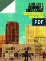 Estudio Introductorio Del Paradigma de La Seguridad Ciudadana