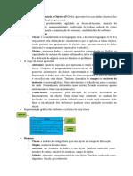 Programação Orientada a Objetos (P