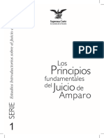 Los principios en el juicio de amparo