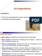 Aula 2 - Cultivo de Microrganismos