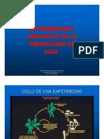4 ENFERMEDADES LULO