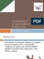 Artrópodos (características generales) para estudiantes de medicina