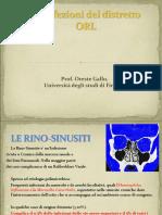 Le Infezione Del Distretto ORL