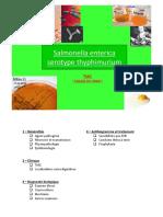 Salmonella enterica