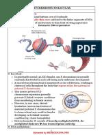 Uworld_Notes_for_USMLE_Step_1_Biochemist
