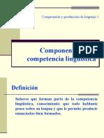 02a Componentes de La Competencia Linguistica