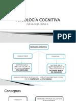 Cognitivismo (1)