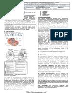 GUIA 3 NUTRICION CELULAR, TRANSPORTE, OBTENCION DE ENERGIA Y DIVISION CELULAR 5 ABRIL - 23 DE ABRIL (1)