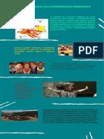 territorio para las comunidades indígenas