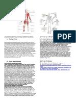 Anatomi_otot_dan_gerak_sendi_manusia[1]