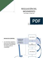 Regulación Del Movimiento 2017pptx (2)
