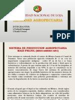 Sistema de Produccion Agropecuaria Maiz-frijol (Mesoamericano)