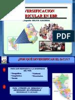 3. DIVERSIFICACION CURRICULAR 2014