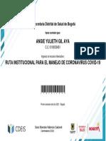 RUTA INSTITUCIONAL PARA EL MANEJO DE CORONAVIRUS COVID-19_Certificado de Participación