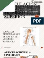 Clase 2 Anatomia Medihelp